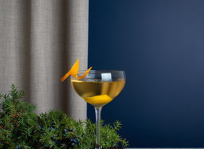 A drink in a glass with some orange peel and juniper.
