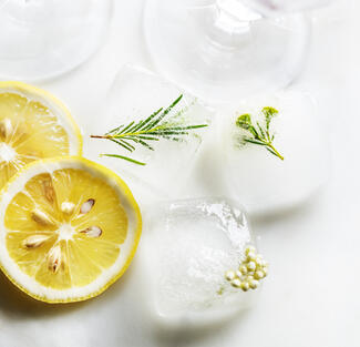 Lemon and ice